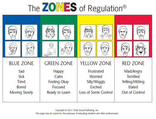 emotion regulation In addition to, or as part of, emotion regulation therapy and self-regulation  therapy, there are techniques, such as meditation, mindfulness and stress.