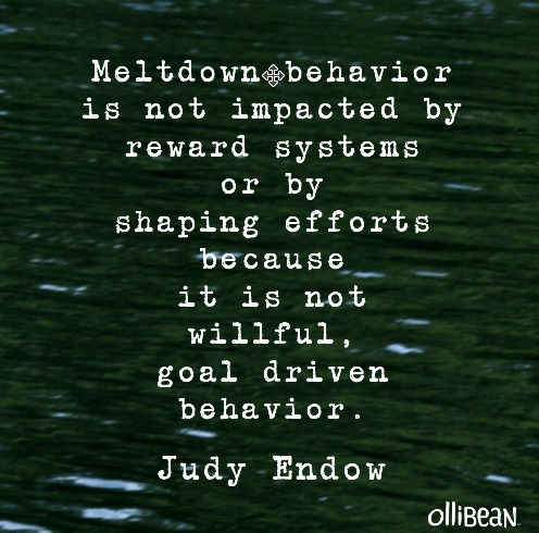 meltdown judy endow